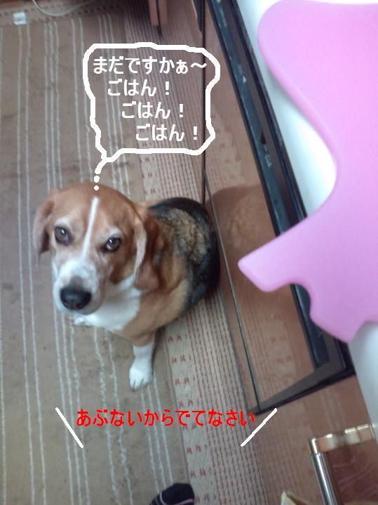 Keitai11_093