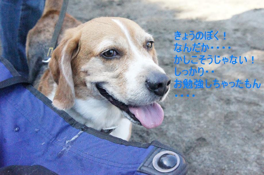 Keitai12_068