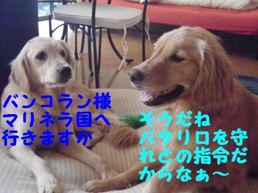 201008kanazawa_079