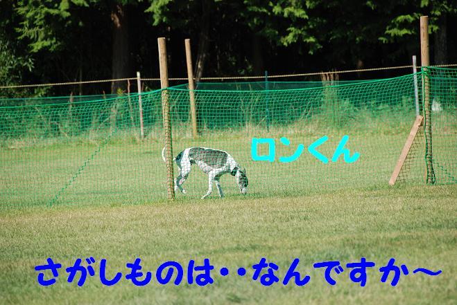 20101011_150